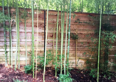 wood-horizontal-bamboo